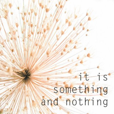 An Introduction to Something and Nothing