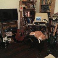 David Cat and the iPad Studio